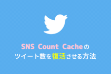 sns-count-cache